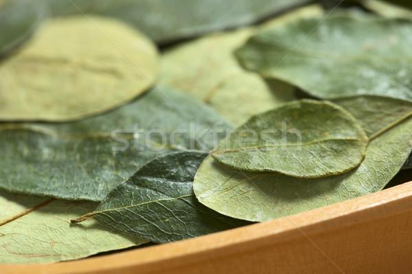 Coca Leaves in Wooden Bowl Stock photo © ildi