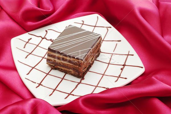 Tiramisu torta felszolgált tányér díszített csokoládé Stock fotó © ildi