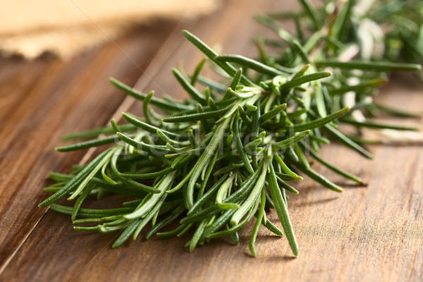 Fresh Rosemary Stock photo © ildi