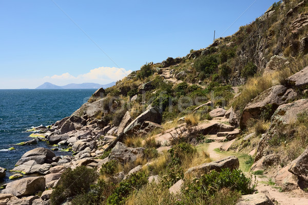 海岸線 湖 近い ボリビア 小 観光 ストックフォト © ildi
