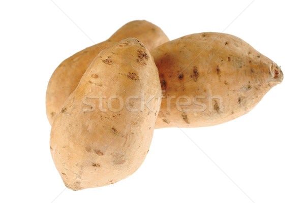 Sweet Potato on White Stock photo © ildi