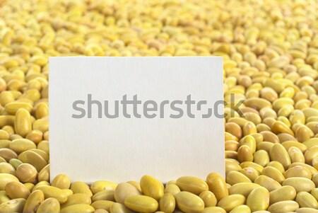 Beyaz boş kart kurutulmuş seçici odak odak Stok fotoğraf © ildi