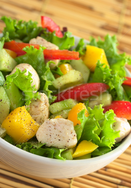 Chicken Salad Stock photo © ildi