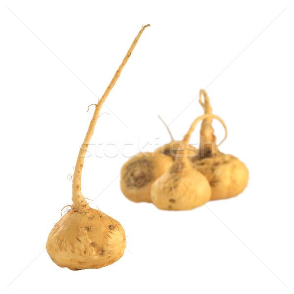 женьшень используемый Перу различный здоровья эффекты Сток-фото © ildi