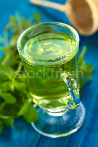 Fresh Mint Tea Stock photo © ildi