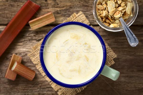 Ravent yoğurt iki yüzlü emaye fincan Stok fotoğraf © ildi