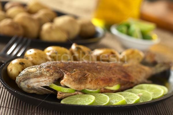 Frito truta cal fatias batatas salsa Foto stock © ildi