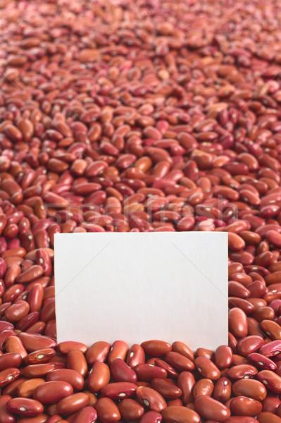 生 赤 腎臓 豆 ブランクカード 選択フォーカス ストックフォト © ildi
