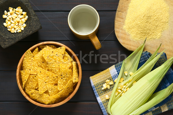 Tortilla Chips with Ingredients Stock photo © ildi