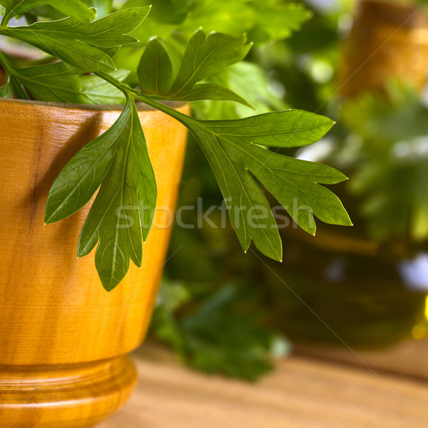 Parsley with Wooden Mortar Stock photo © ildi