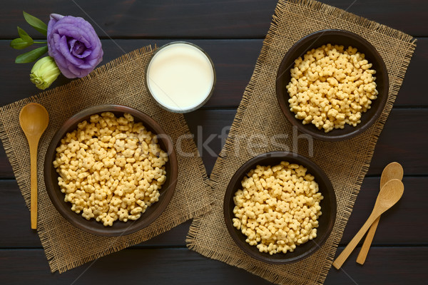 Honey Flavored Breakfast Cereal and Milk Stock photo © ildi
