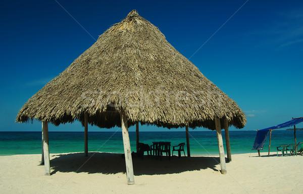 Hut at Playa Blanca, Colombia Stock photo © ildi