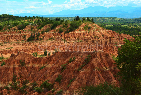 Tatacoa Desert in Colombia Stock photo © ildi