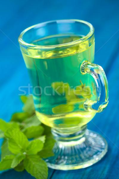Fresh Tea out of Peruvian Muna (lat. Minthostachys mollis)  Stock photo © ildi