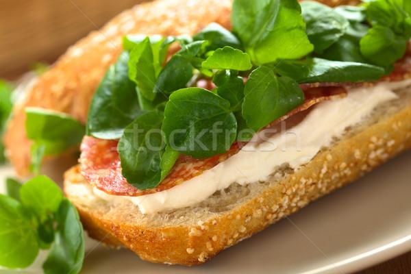 Salami, Cream Cheese and Watercress Sandwich Stock photo © ildi