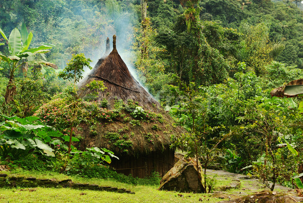 Small Hut in Northern Colombia Stock photo © ildi