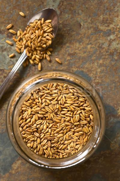 Pirított zab magvak egészséges ropogós reggeli gabonapehely Stock fotó © ildi