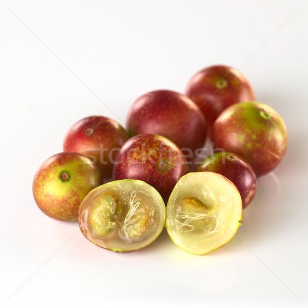 Camu Camu Fruits Stock photo © ildi
