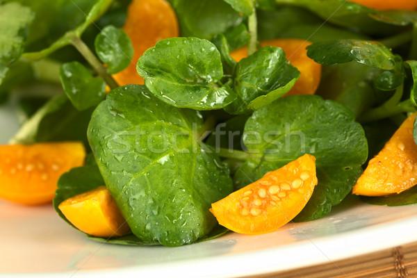サラダ 新鮮な 健康 選択フォーカス フォーカス 作品 ストックフォト © ildi