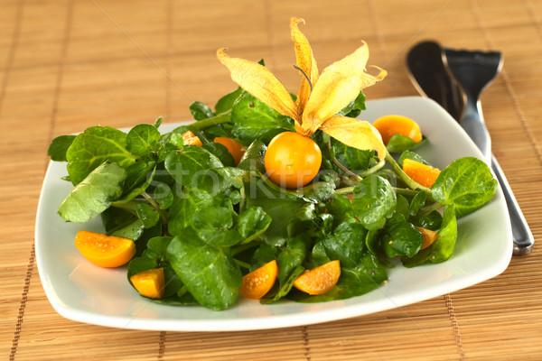 Watercress and Physalis Salad Stock photo © ildi