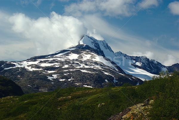 Summit in Jotunheimen Stock photo © ildi