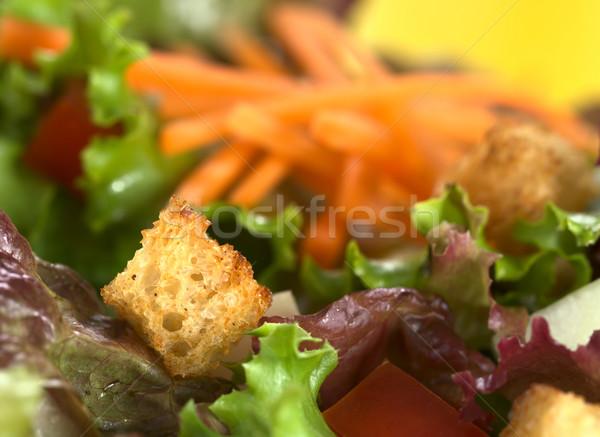 Kızarmış ekmek parçaları salata ekmek taze sığ alan Stok fotoğraf © ildi