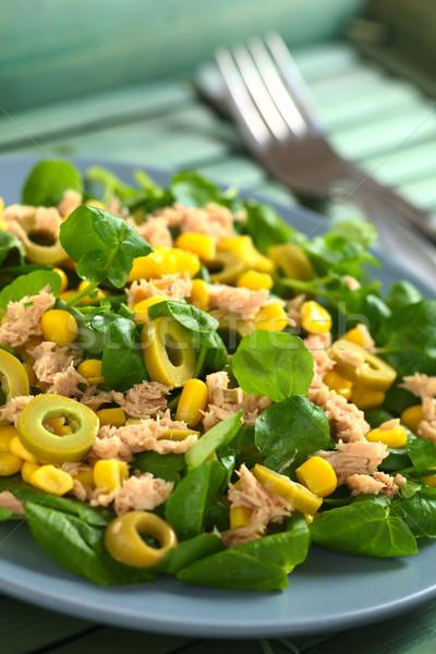 Tuna Sweetcorn and Olive Salad Stock photo © ildi