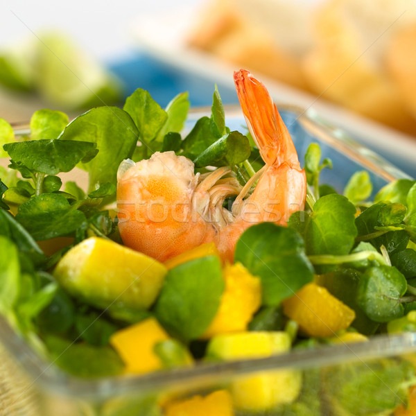 Shrimp on Watercress Salad Stock photo © ildi