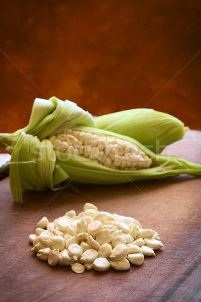 White Corn Called Choclo (Peruvian or Cuzco Corn) Stock photo © ildi