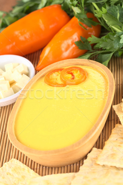 Peruvian Huancaina Sauce Stock photo © ildi