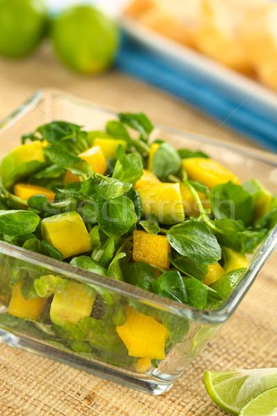 Watercress Mango Avocado Salad Stock photo © ildi
