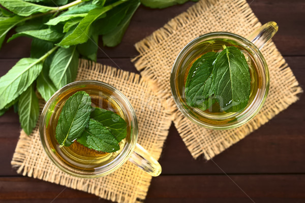 Stock photo: Fresh Mint Herbal Tea