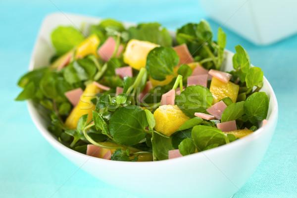 Watercress Pineapple Ham Salad Stock photo © ildi