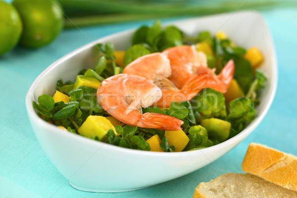 Shrimps on Watercress Salad Stock photo © ildi