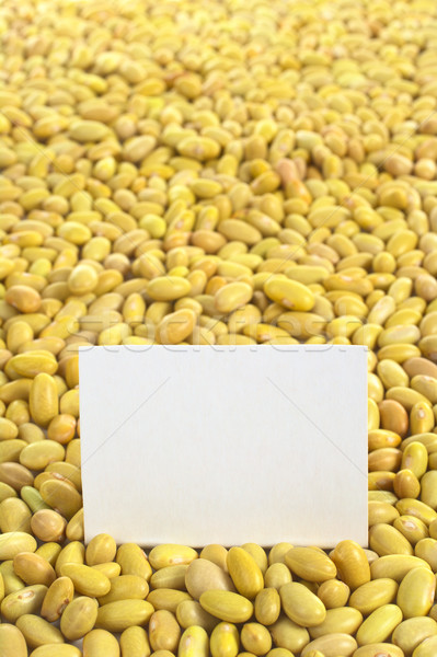 Raw Canary Beans with Blank Card Stock photo © ildi