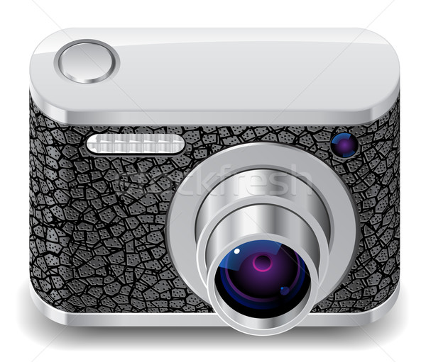 Ikon kompakt fotó kamera díszített bőr Stock fotó © ildogesto