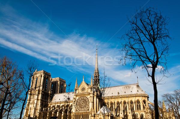 Catedral de Notre Dame Paris França belo ver francês Foto stock © ilolab