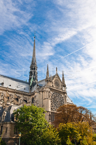 Notre Dame Cathedral  Stock photo © ilolab
