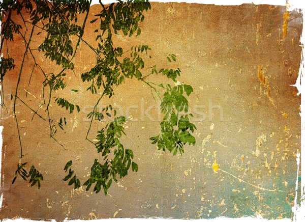 Multicolor foliage background Stock photo © ilolab