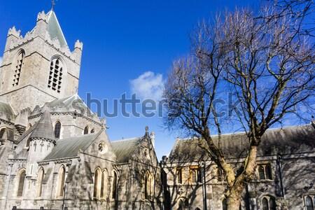 Belo ver Catedral de Notre Dame Paris França francês Foto stock © ilolab