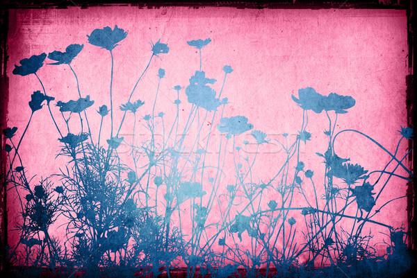 Kwiat streszczenie kwiatowy stylu tekstury przestrzeni Zdjęcia stock © ilolab