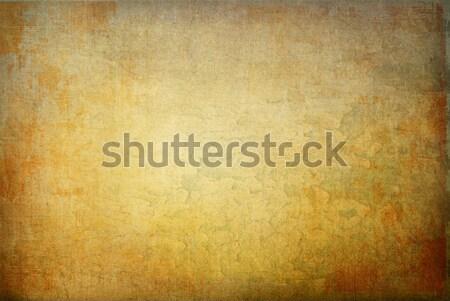 Sehr detaillierte Grunge Rahmen Textur Wand Stock foto © ilolab