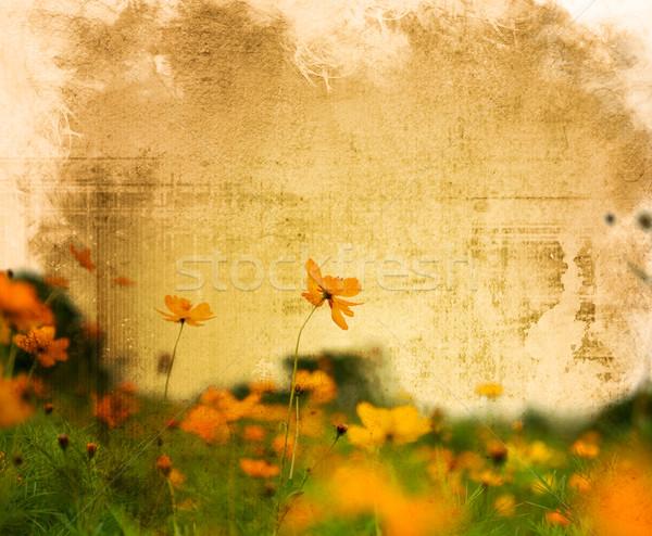 ストックフォト: ヴィンテージ · 花 · 紙 · 図書 · 葉 · 背景