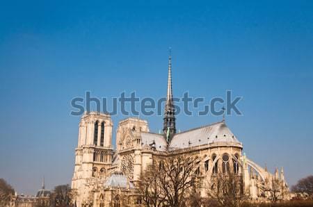 Dama París hermosa vista Catedral de Notre Dame Francia Foto stock © ilolab