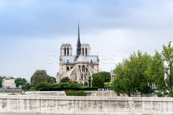 beautiful view Notre Dame Cathedral in Paris France (French for  Stock photo © ilolab