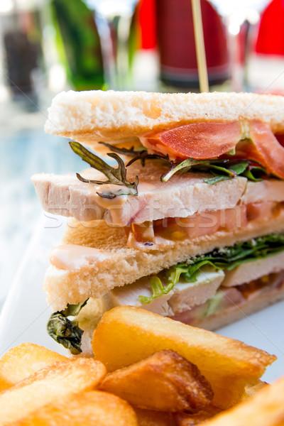 Sandviç tavuk peynir altın patates kızartması patates Stok fotoğraf © ilolab