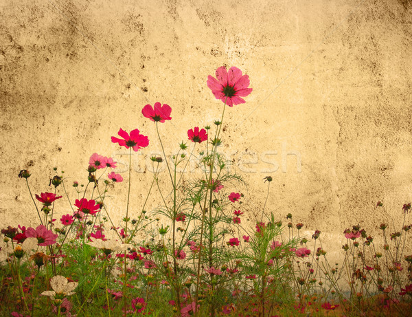 Vintage paper floral Stock photo © ilolab