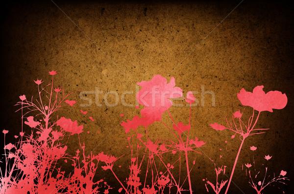 Fiore abstract floreale stile texture spazio Foto d'archivio © ilolab
