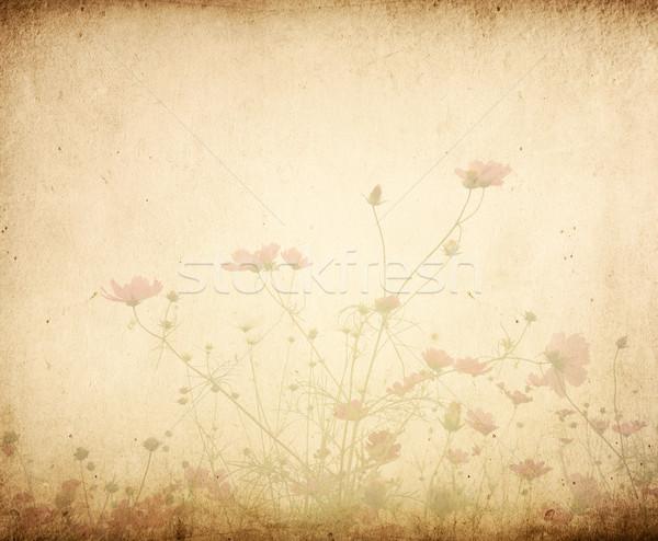 Vintage цветок бумаги книга лист фон Сток-фото © ilolab