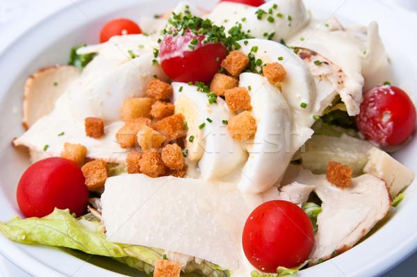 Friss csirkesaláta paradicsomok étel sajt olaj Stock fotó © ilolab